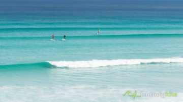 SUP Stand Up Paddle Boarding in perfect waves in Westaustralia