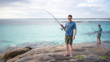 fishing Hering in Australia on a beautiful beach
